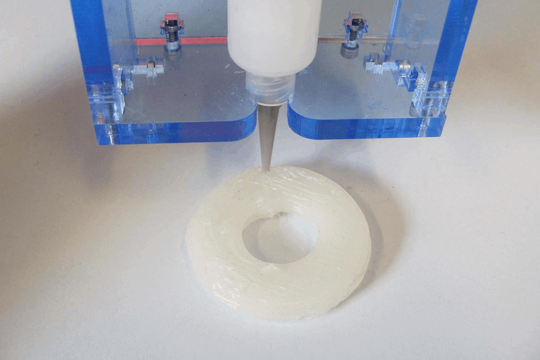 Organ Printing tissue